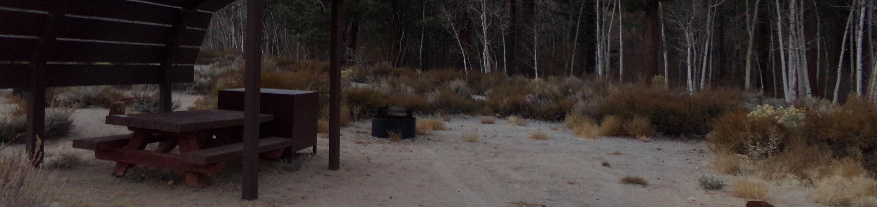 Tuff Campground site #03 featuring shaded picnic area, camping space, and fire pit.
