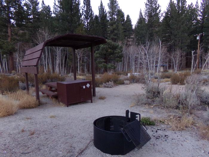Tuff Campground site #05 featuring shaded picnic area, camping space, and fire pit.