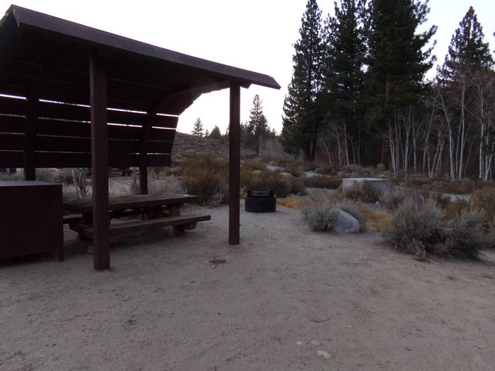 Tuff Campground site #06 featuring shaded picnic area, camping space, and fire pit.