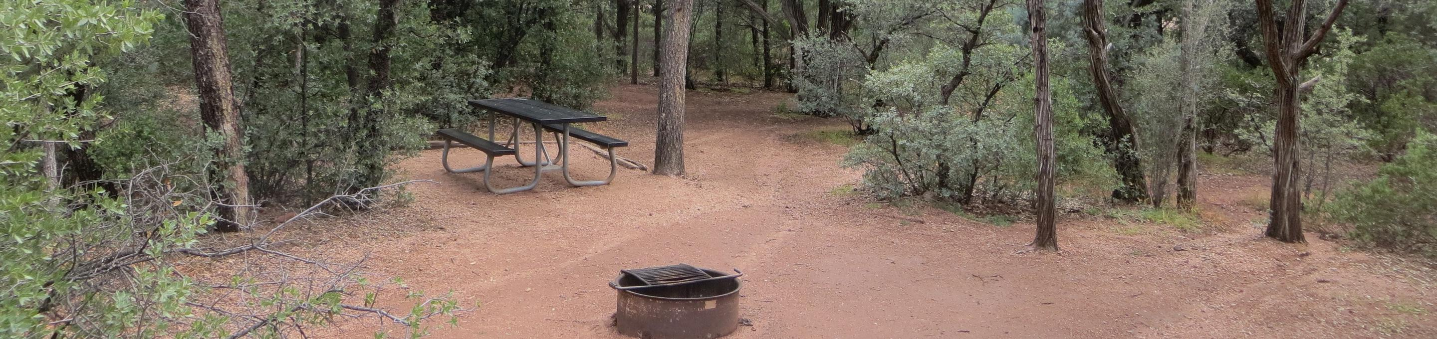 Houston Mesa, Mountain Lion Loop site #12 featuring the wooded picnic area, camping space and fire pit.