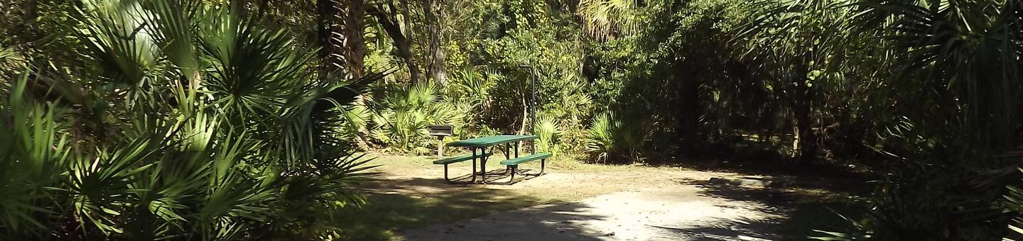 Juniper Springs Recreation Area site #34 tropical setting with picnic area and camping space.