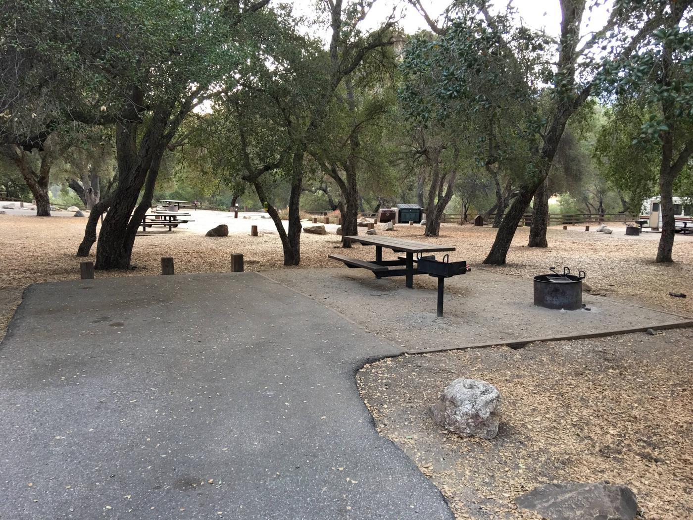 Arroyo Seco Campground 4