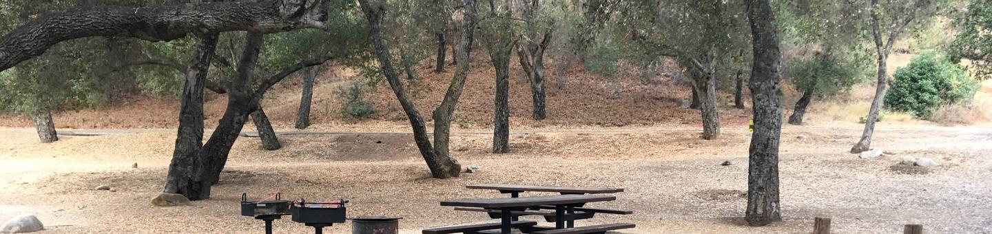 Arroyo Seco Campground 1