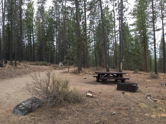Site 11McKay Crossing Campground