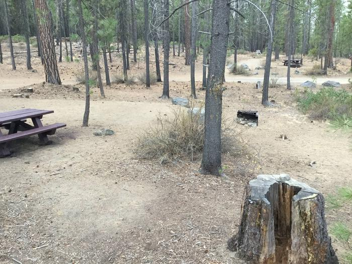 Site 13McKay Crossing Campground