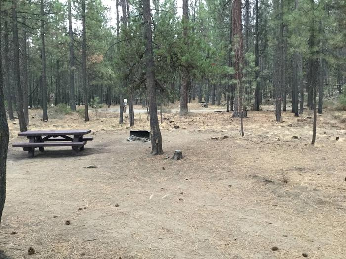 Site 14McKay Crossing Campground