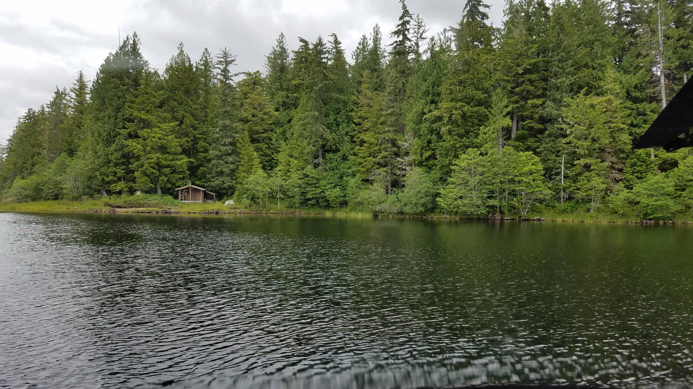 Honker LakeHonker Lake Cabin