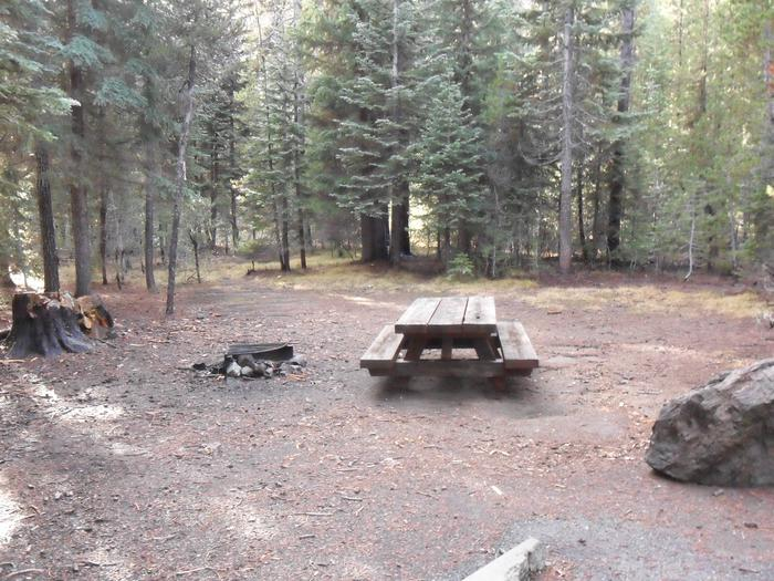 Flat campsite with one picnic table and fire ring.C-02