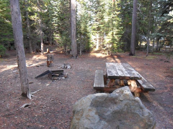 Flat campsite with one picnic table and fire ring.C-05