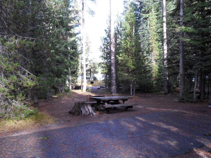Flat campsite with one picnic table and fire ring.C-03