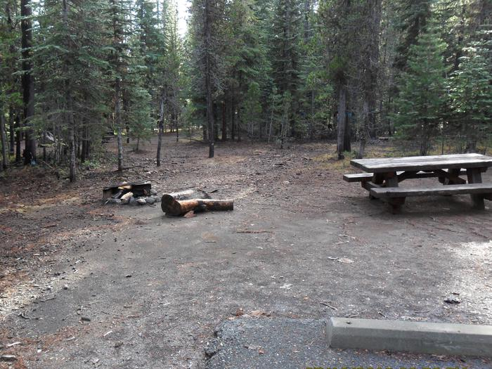 Flat campsite with one picnic table and fire ring.C-04