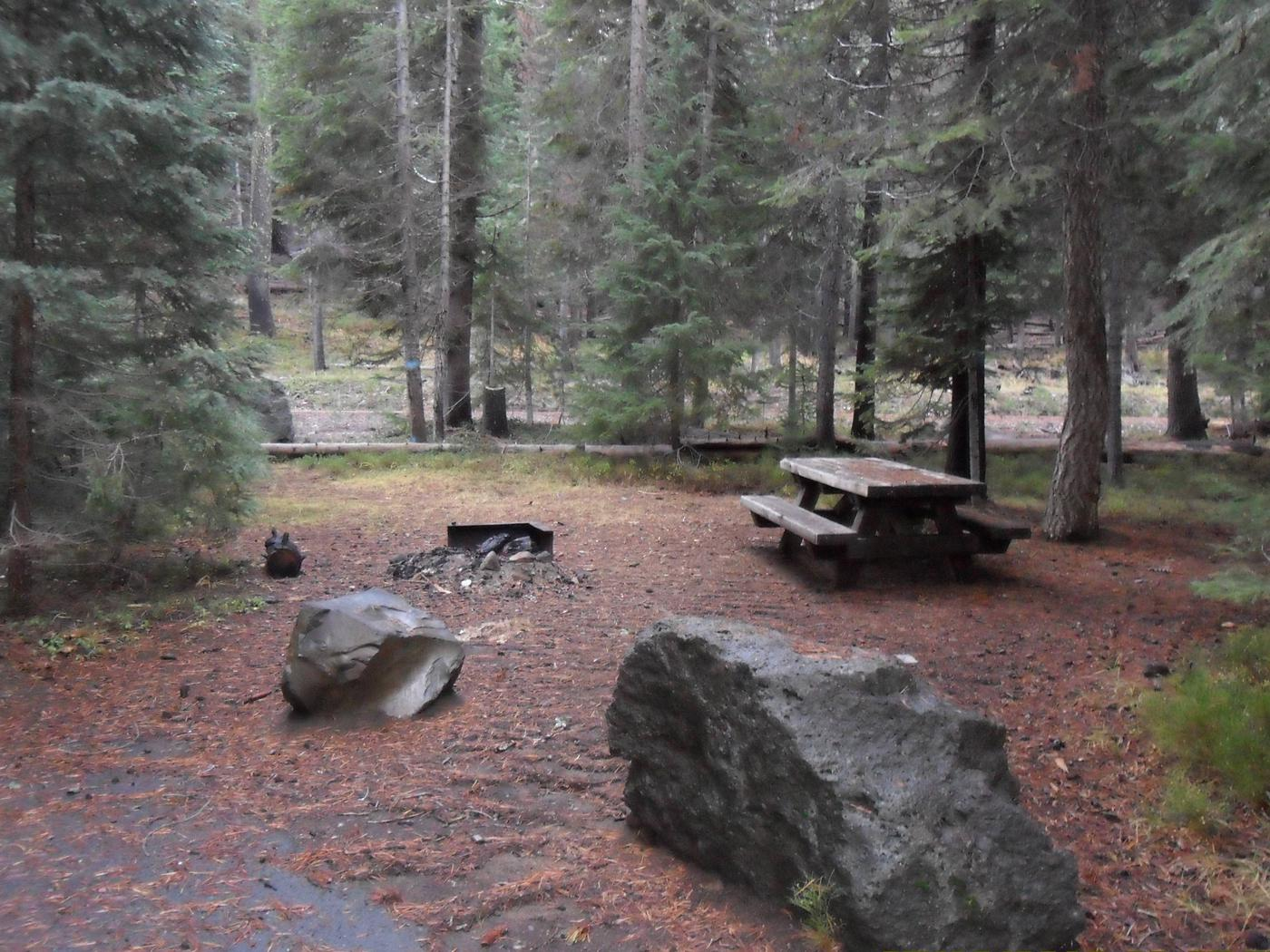 Flat campsite with one picnic table and fire ring.C-10