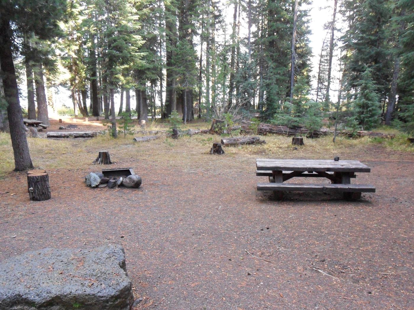 Flat campsite with one picnic table and fire ring.C-11