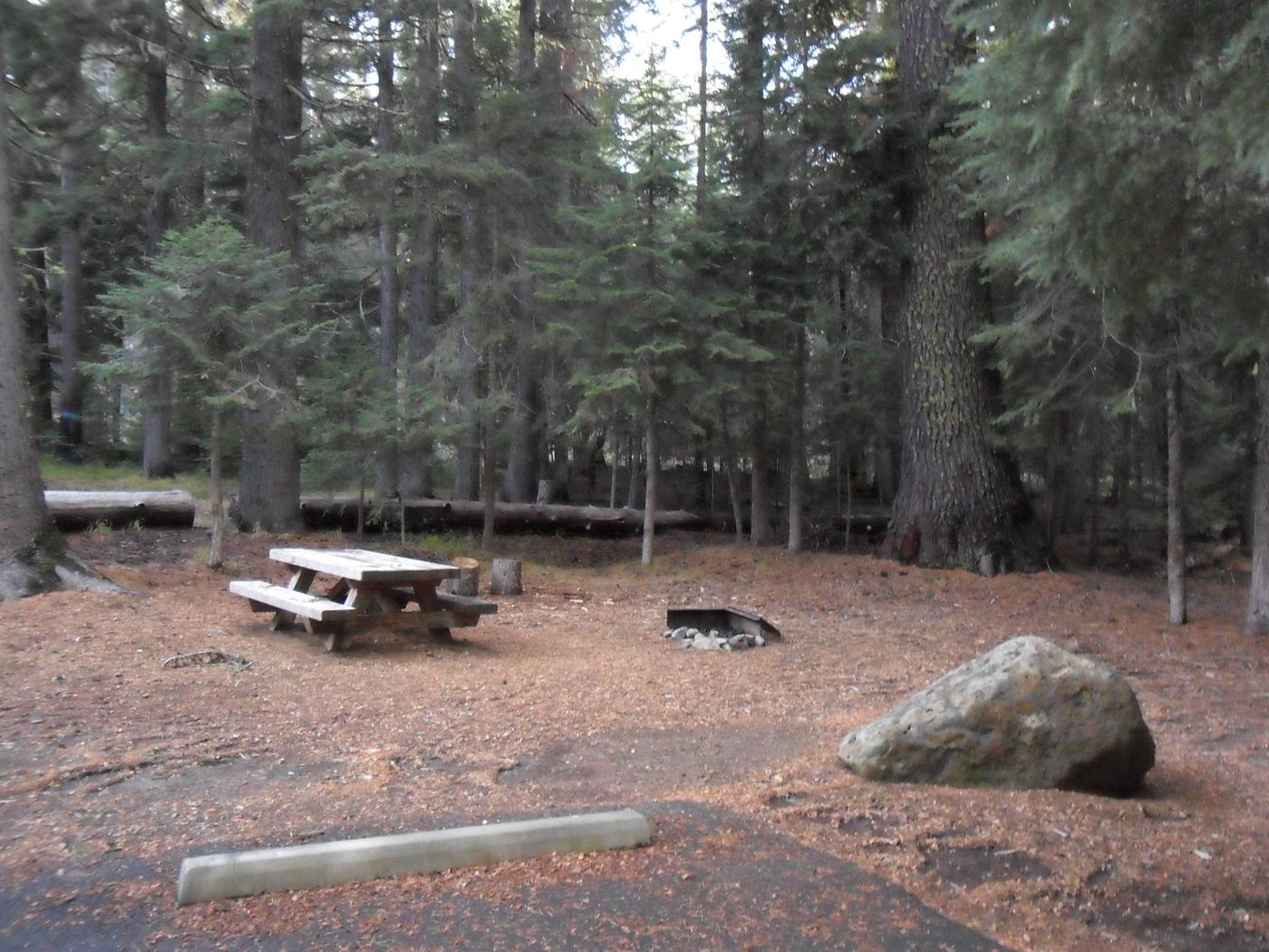 Flat campsite with one picnic table and fire ring.C-12
