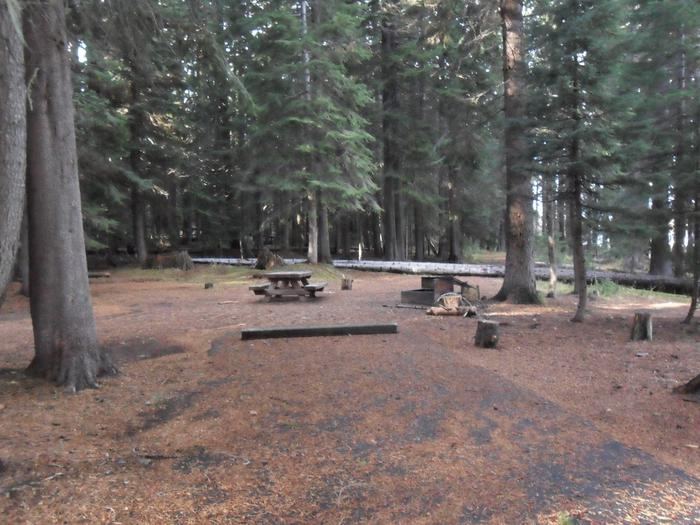 Flat campsite with one picnic table and fire ring.C-13