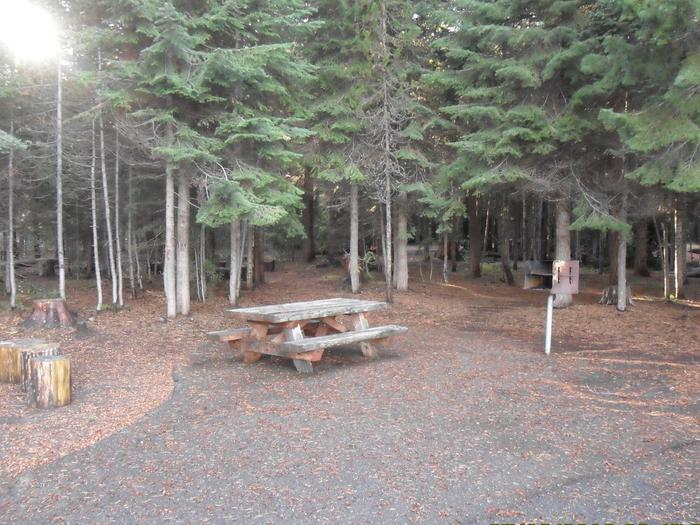 Flat campsite with one picnic table and fire ring.C-17