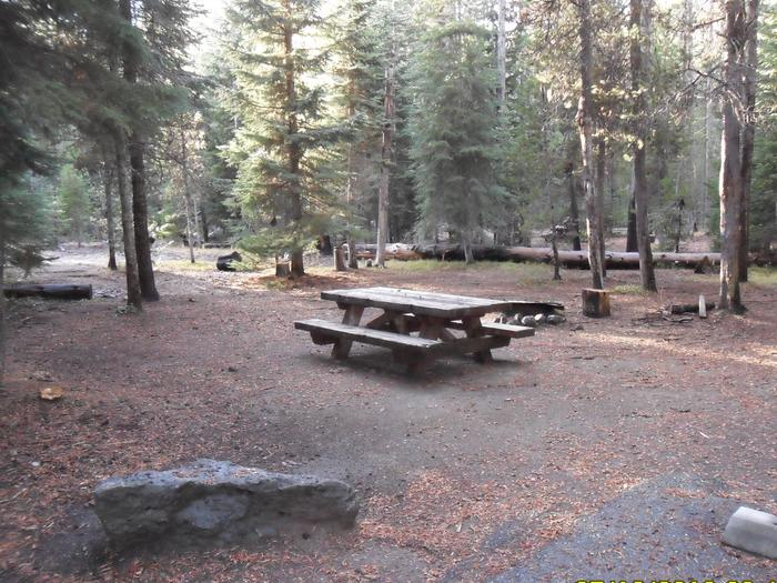 Flat campsite with one picnic table and fire ring.C-19