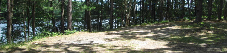 Lyman Lake Site 1