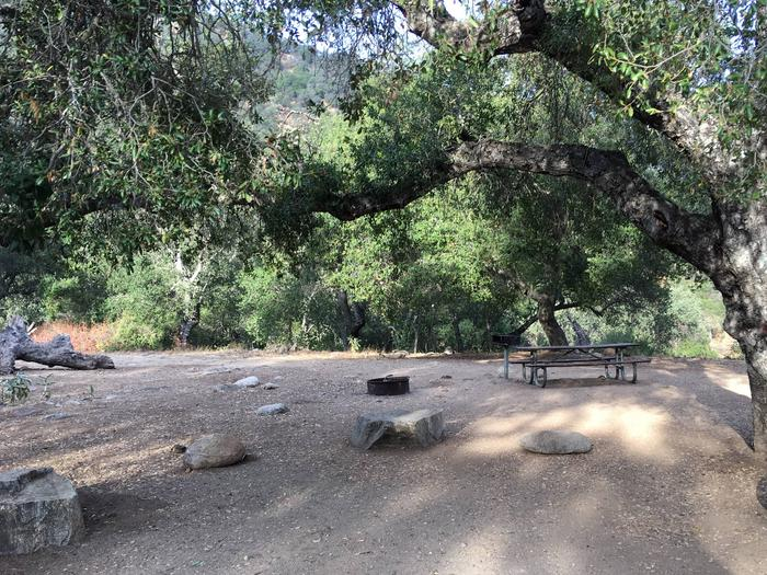 Arroyo Seco Campground 40