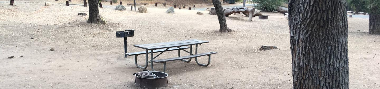 Arroyo Seco Campground 45