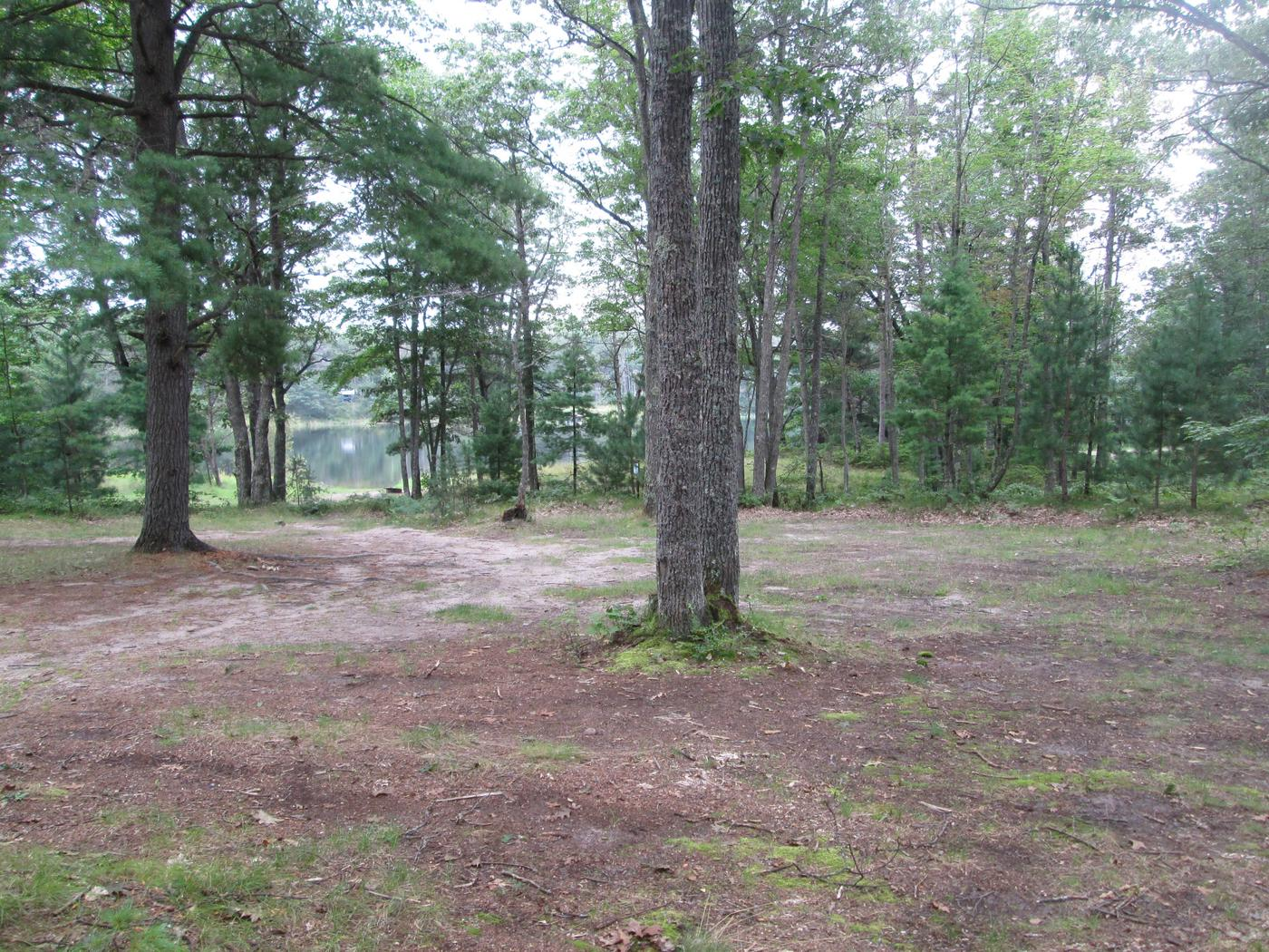 Lyman Lake Site 6