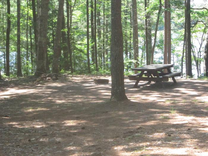 Preview photo of Little Bass Lake Dispersed Campsite