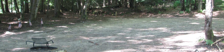 MINERVA LAKE CAMPSITE