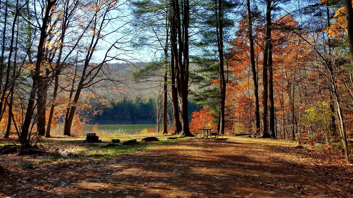 Red Bridge Campsite in the Fall