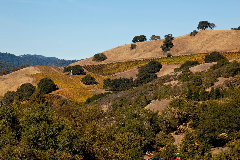 views of hillsideshillsides