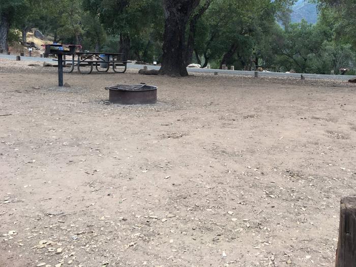 Arroyo Seco Campground 46