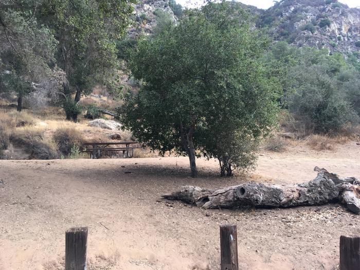 Arroyo Seco Campground 48