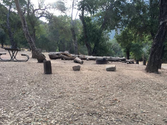 Arroyo Seco Campground 50