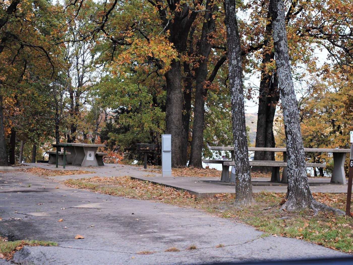Highway 9 North Campsite #6Campsite N06