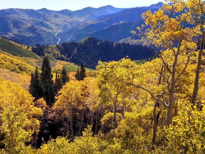 Big Cottonwood Canyon Scenic Byway