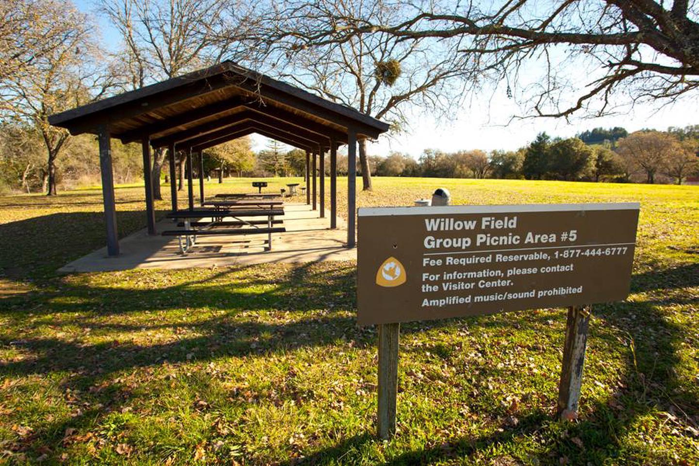 Willow Field Group Picnic #5Willow Field Group picnic #5