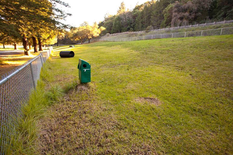 Huge Fenced Dog Park with agility eqipmentHuge Fenced Dog Park with agility Equipment
