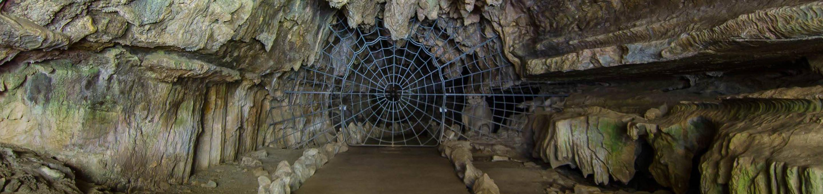 In order to enter Crystal Cave you must first pass through the famous historical Spider Web Gate. The gate was installed in 1939.The Spider Web Gate was installed in 1939.