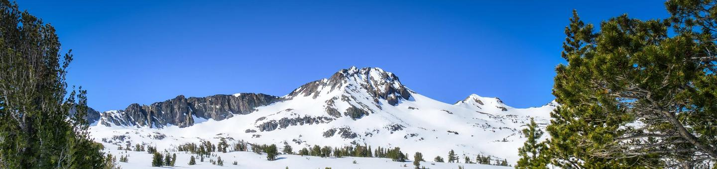 Carson Pass Highway (Route 88)