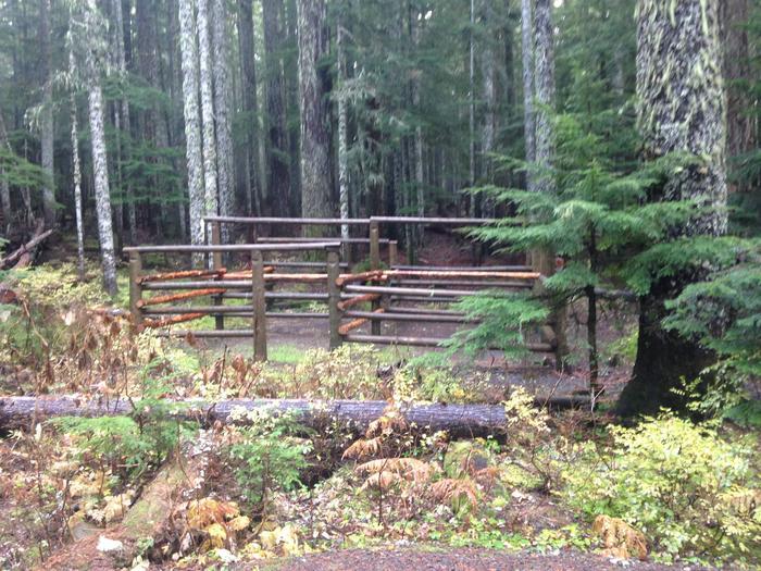 Horse Camp site 4