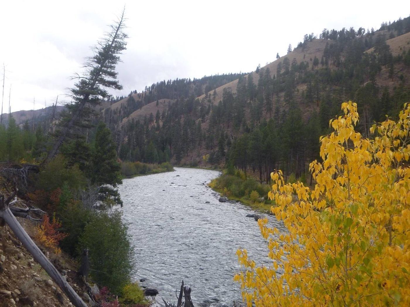 2018 Fall Colors along the Middle Fork of the Salmon River