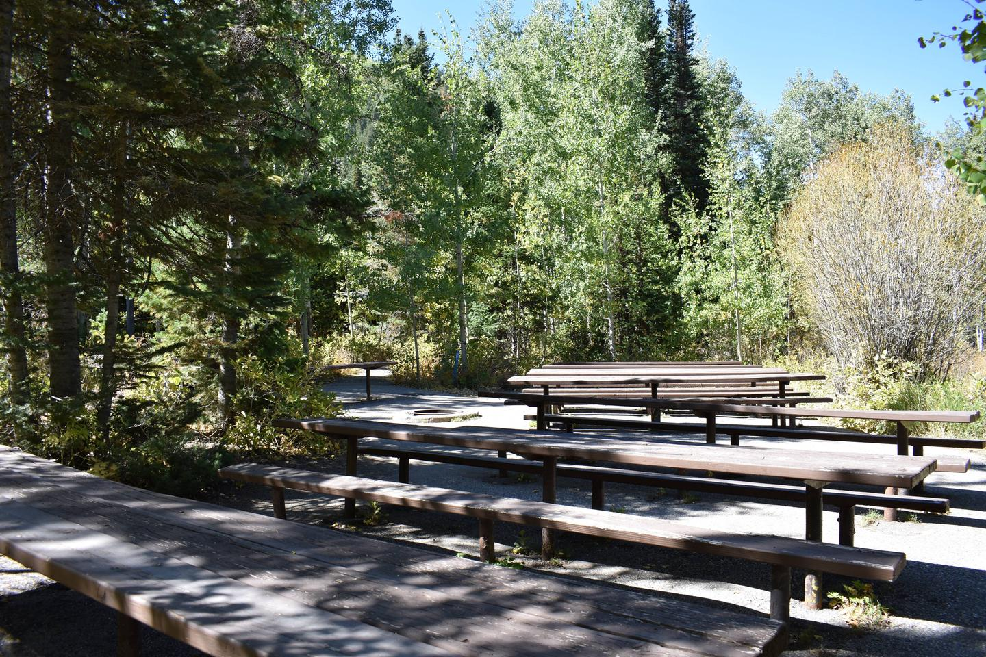 Spruces Campground – Big Cottonwood CanyonGroup Site 2