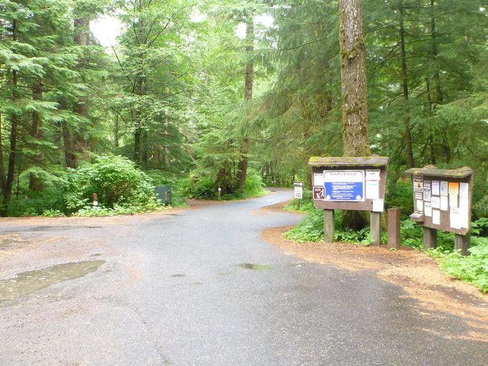 Preview photo of Signal Creek Campground