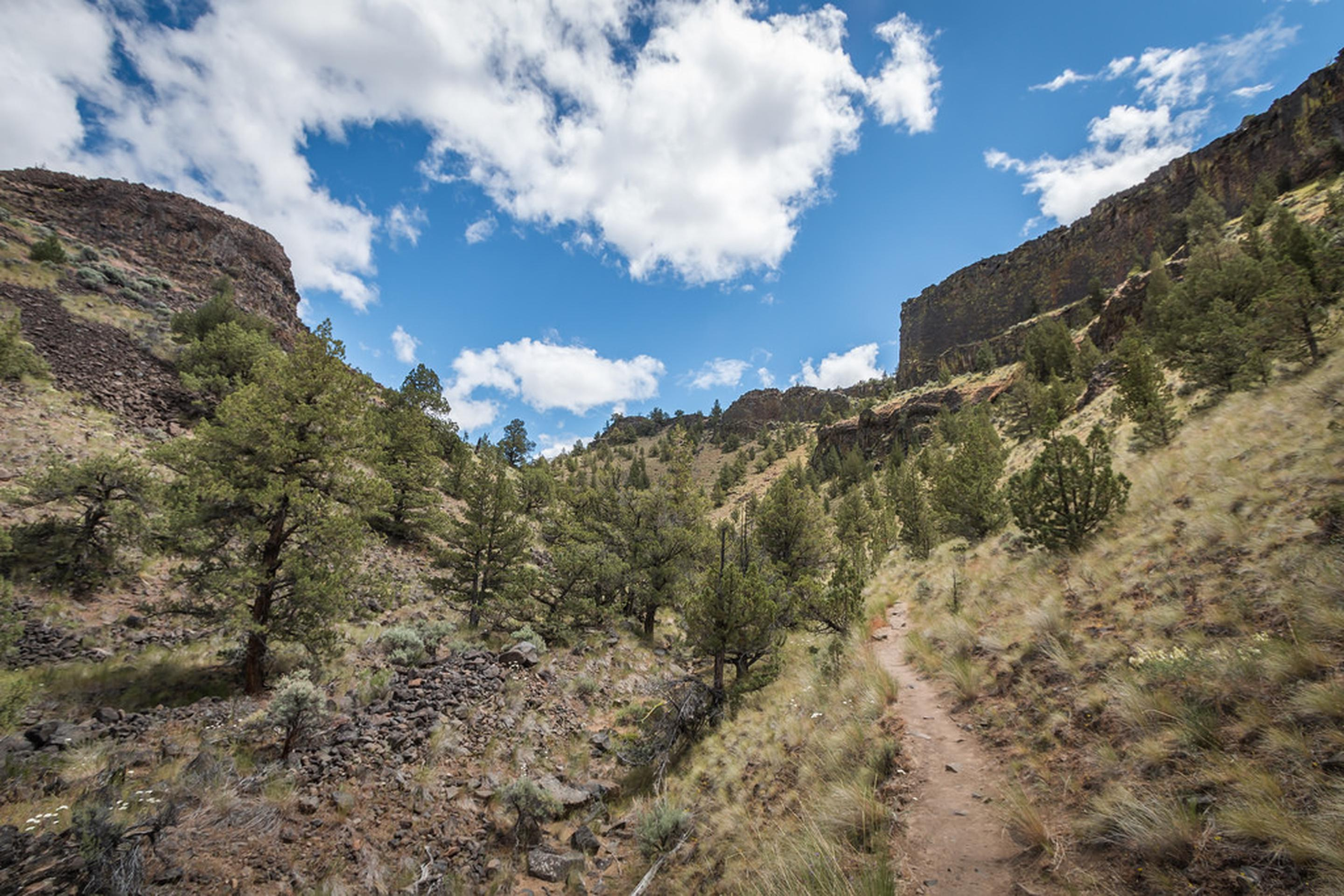 View of the hike up the Chimney Rock Trail