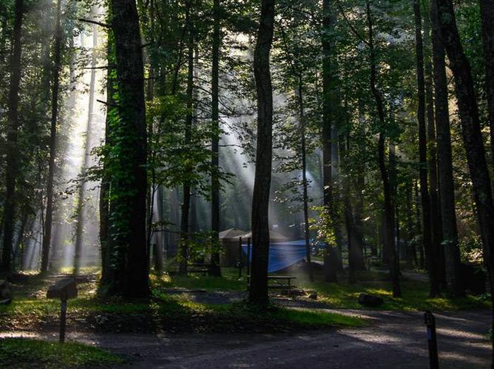 Preview photo of Abram'S Creek Campground