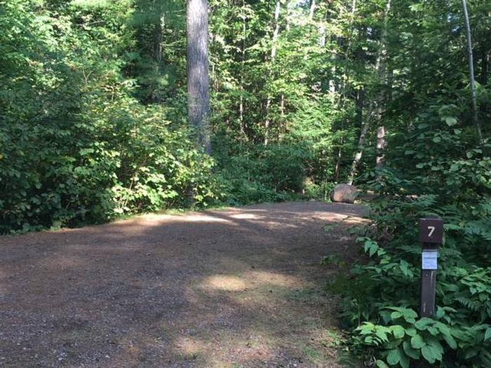 Site 7Sawbill Lake Campground Site 7