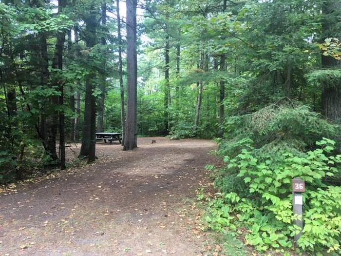 Site 36Sawbill Lake Campground site 36