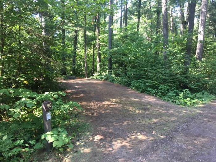 Site 40Sawbill Lake Campground site 40