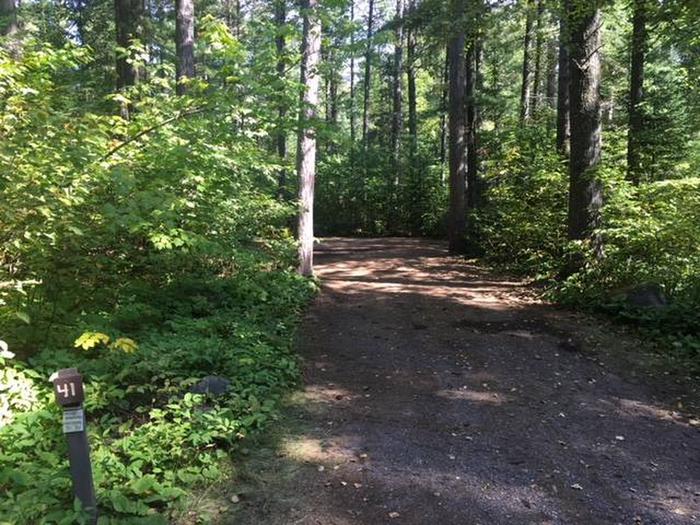 Site 41Sawbill Lake Campground site 41