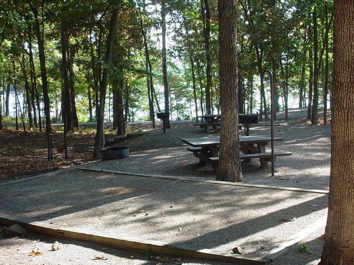 Campsite #3 LakeviewCampsite #3