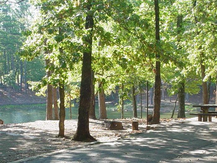Campsite #5 Lake ViewCampsite #5
